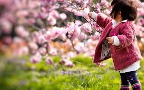 girlie, sakura, stunner, spring, cherry