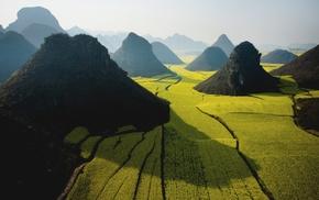 холм, туман, Китай, природа, пейзаж