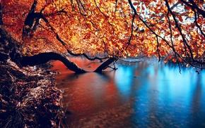 отражение, река, природа, вода, деревья