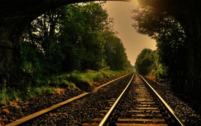 деревья, железная дорога, лес