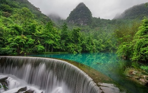 forest, nature, river, waterfall, mist