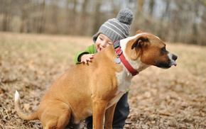 boy, dog, joy, wallpaper, animals