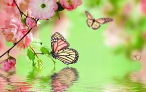 photoshop, flowers, twigs, water, sakura