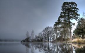 stunner, trees, mist, water, river