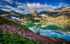 mountain, flowers, landscape, reflection, lake
