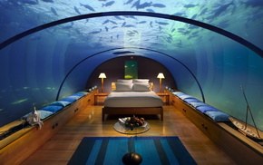 water, room, bed, rest, resort