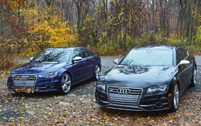 blue, Audi, black, autumn, trees